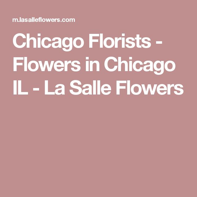 Chicago Florists - Flowers in Chicago IL - La Salle Flowers