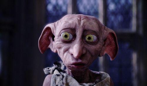 Harry Potter Elfen