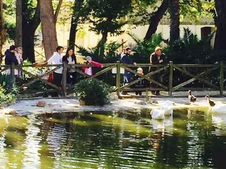Allo Zoo di Napoli gennaio è Alla scoperta del movimento degli animali
