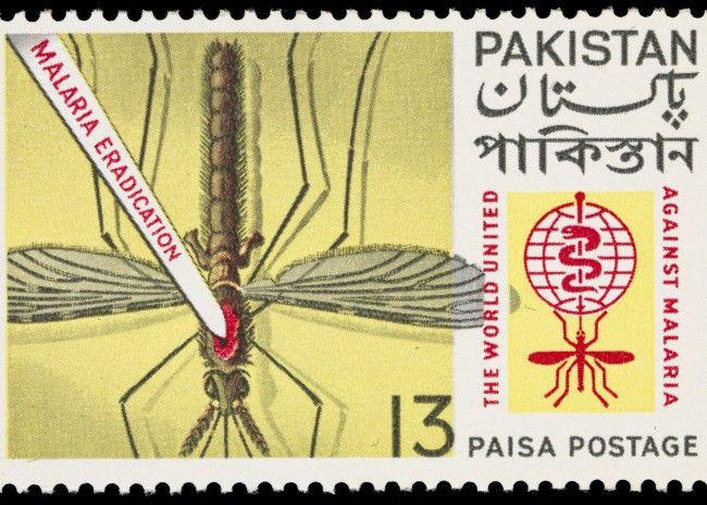 World United Against Malaria: Pakistani postage stamp, 1962.