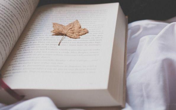 http://www.manuelacervetti.com/ | Web Caos e Parole. Mi piace perché sì perché ti da dei buoni consigli, ti ricorda cose che non fai da un sacco e insomma è un bel blog. | Manuela Cervetti
