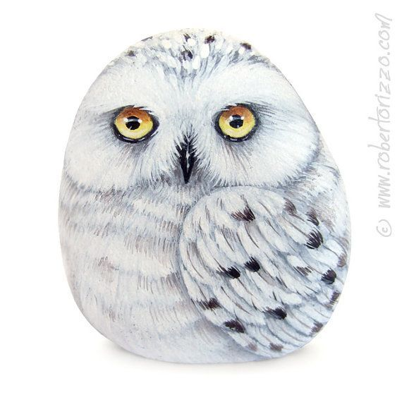 Hey, I found this really awesome Etsy listing at https://www.etsy.com/listing/218964714/stone-painted-snowy-owl-rock-painting