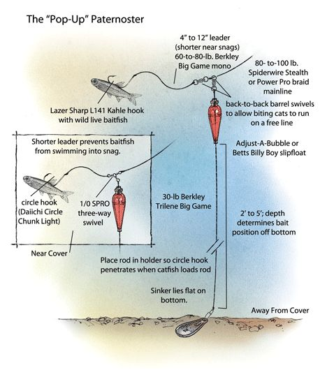 Expert Catfish Rigs - Pop-Up Paternoster