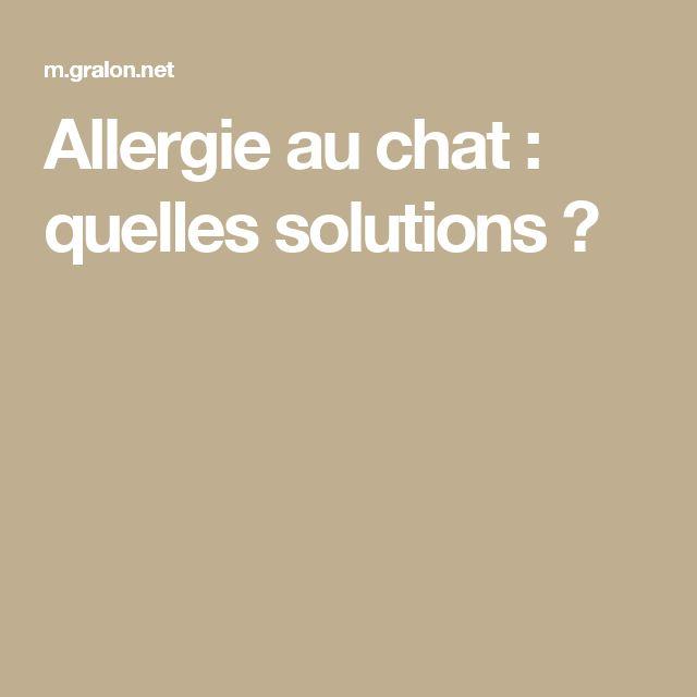 Allergie au chat : quelles solutions ?