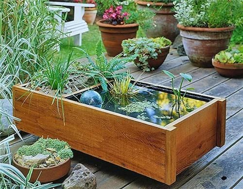 Easy Garden Ideas For Small Spaces 39 best container water gardens images on pinterest | gardening
