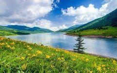 群馬県にある野反湖は日本とは思えないほどの絶景 野反湖のぞりこは水深m周囲kmのダム湖であまりの美しさに天空の湖とも呼ばれています 夏の風景もいいのですが秋の紅葉シーズンもおすすめ キャンプ場もあるので湖畔でキャンプが楽しめます 最高の休日が楽しめますね tags[群馬県]