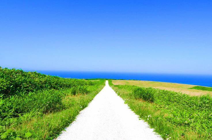 """気分はナウシカ!「風の谷の白い道」は""""ゴミから生まれた奇跡の絶景""""だった - Find Travel"""