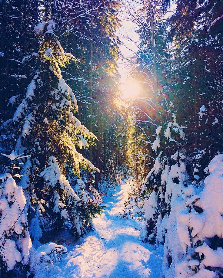 Cestou necestou... s  #onmyway #iPhone #fotimemobilem #zivotvcloudu #winter #snow #sun #woods