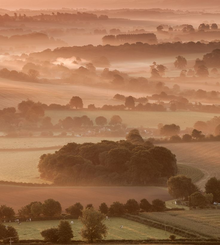 https://flic.kr/p/KpfYEu | Autumn Morning Overlooking the Vale of Pewsey, Wiltshire | My recollection was that 2015 didn't see many misty mornings - or when they did I wasn't there!  Luckily enough I was successful one morning.  Enjoy...