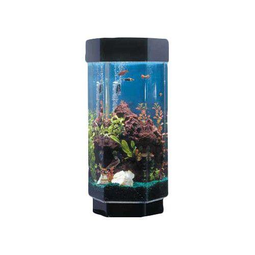 Midwest Tropical Fountain Aqua 15 Gallon Scape Hexagon Aquarium Kit