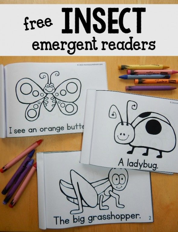 Free insect emergent readers - great to use alongside a kindergarten or first grade insect theme!