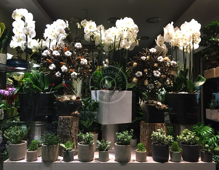 Εντυπωσιακές #ανθοσυνθέσεις με φρέσκα #λουλούδια, ιδανικές για δώρα, την διακόσμηση του σπιτιού & του γραφείου από την Les Fleuristes.