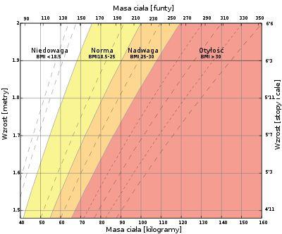 Dokładny opis jak działa i dlaczego jest ważny wskaźnik masy ciała (BMI). Co prawda link z Wikipedii, ale każdy rozpoczynający przygodę z dietą lub treningiem powinien przeczytać i poznać :)