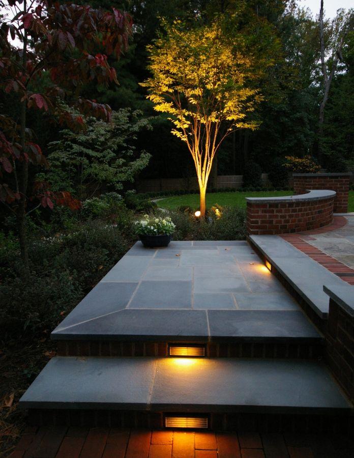 backyard patio uplight trees - Google Search