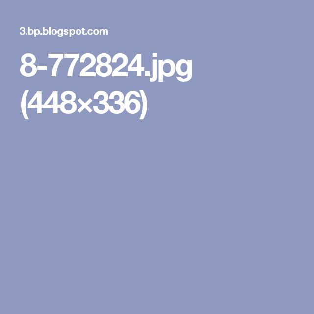 8-772824.jpg (448×336)