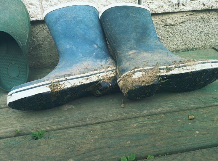 Wellington Boots Covered With Mud