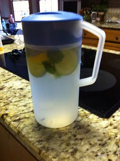 1 gallon water  1 lemon 1/2 cucumber  handful fresh mint leaves (crushed or uncrushed)