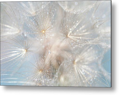 Ethereal Lightness Metal Print by Jenny Rainbow.  All metal prints are professionally printed, packaged, and shipped within 3 - 4 business days and delivered ready-to-hang on your wall. Choose from multiple sizes and mounting options.