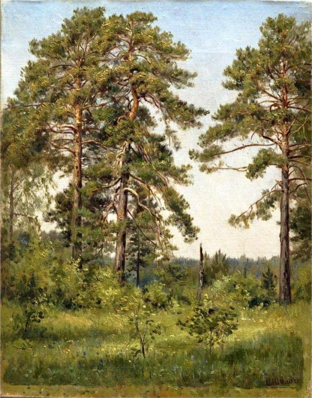 Edge of the pine forest - Ivan Shishkin