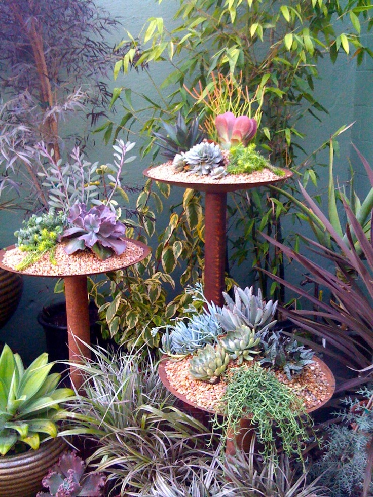 Succulents on old plow disks and reclaimed pipe = awesome garden sculpture