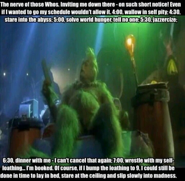 Grinch Quotes Amazing 13 Best Grinch Images On Pinterest  The Grinch The Grinch Stole