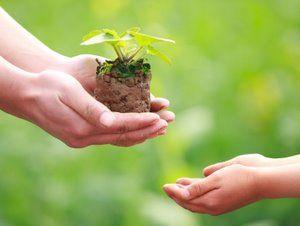 Greengiving_blog