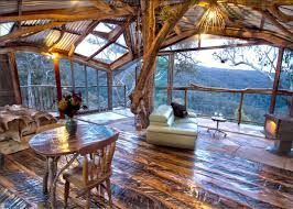 real tree houses to live in - Google Search
