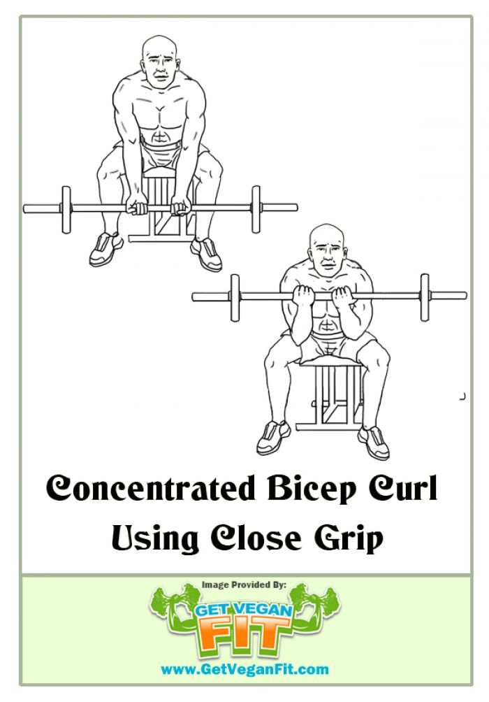 Concentrated Bicep Curl using Close Grip Arm Curls Exercise Illustration