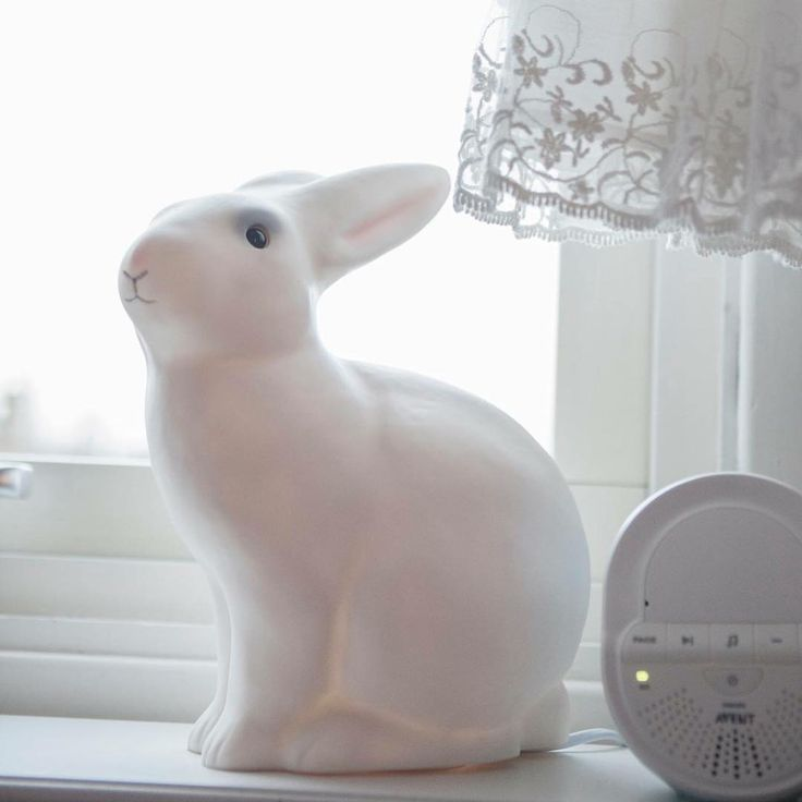 Barnrum, kaninlampa #bunnyinthewindow