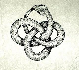 Kundalini, otherwise known as the Ouroboros #animal