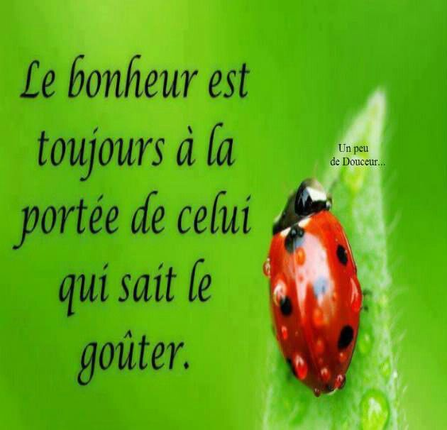 Très 123 best Bonheur images on Pinterest | Happiness, Etiquette and  YH85