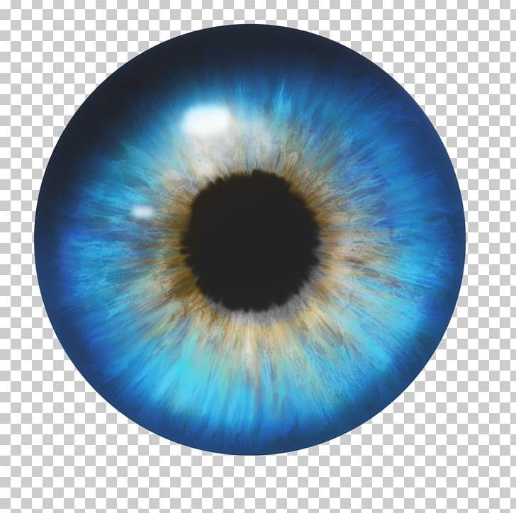 Human Eye Png Blue Circle Closeup Color Computer Icons Human Eye Eye Illustration Eye Color