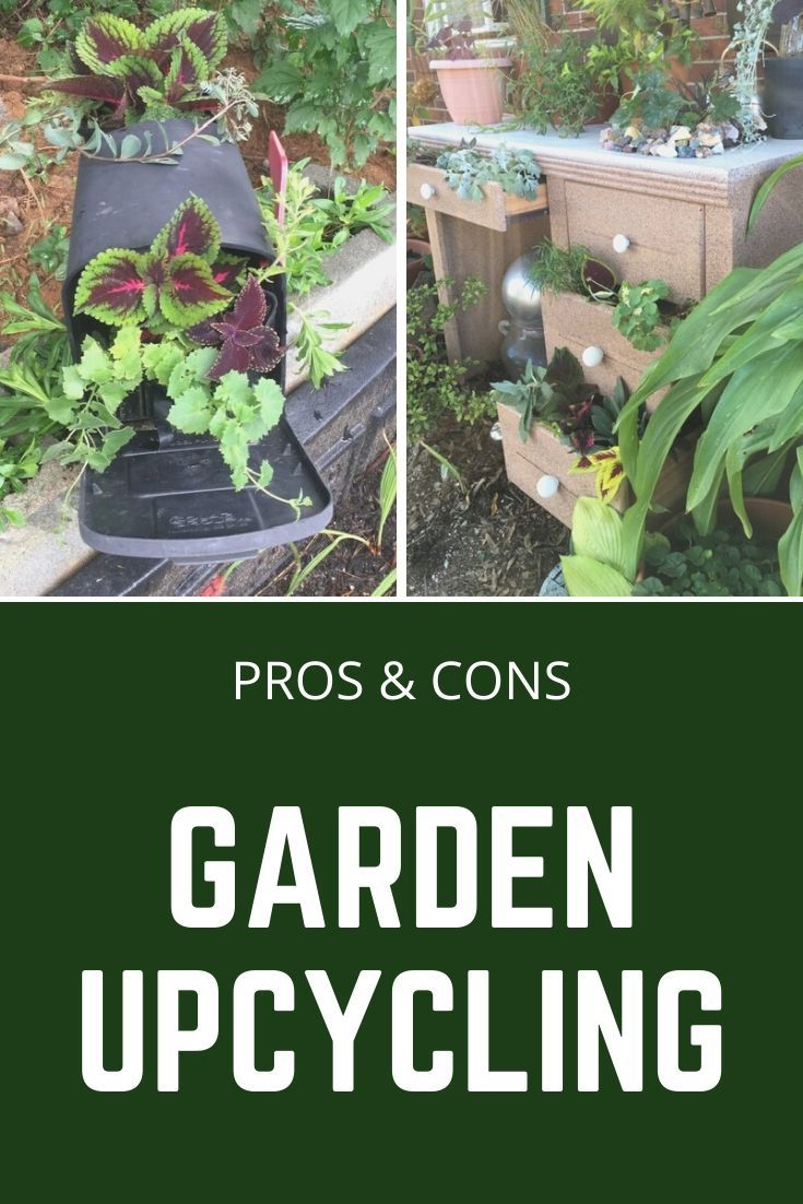Pros And Cons Of Lasagna Gardening