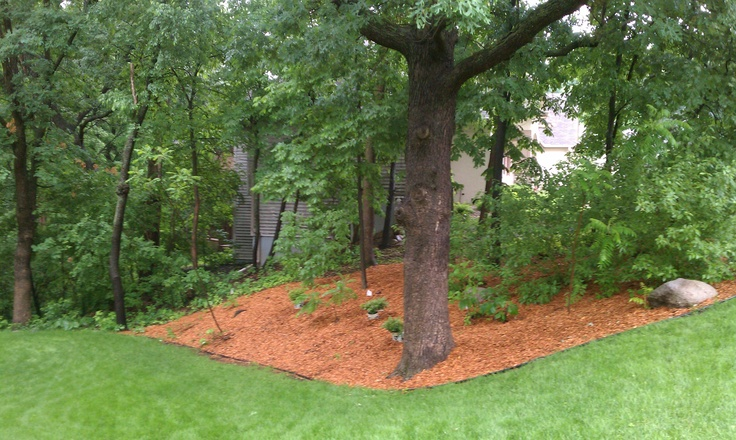 73 best mulch bark west jordan utah images on for Landscape design utah