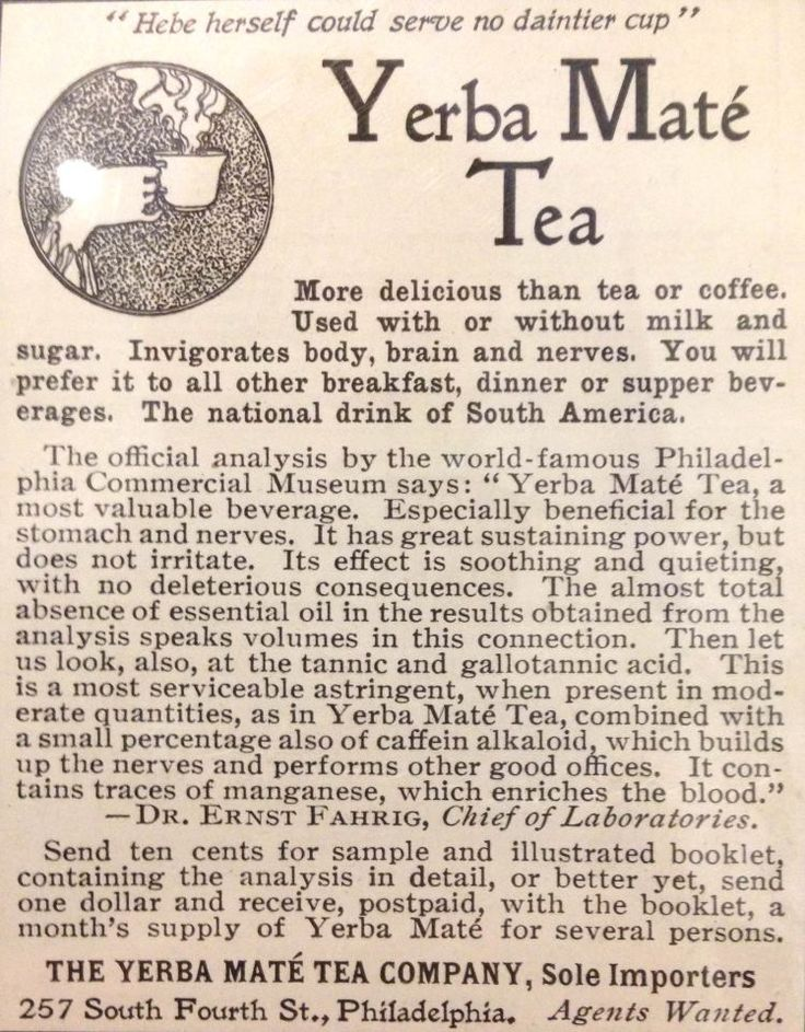 Yerba Mate Tea Ol' News Clipping...