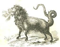 Resultado de imagen para cola de leon animal