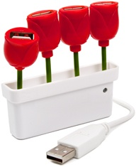 I love to have 2 things on my desk.. tulips and extra usb ports