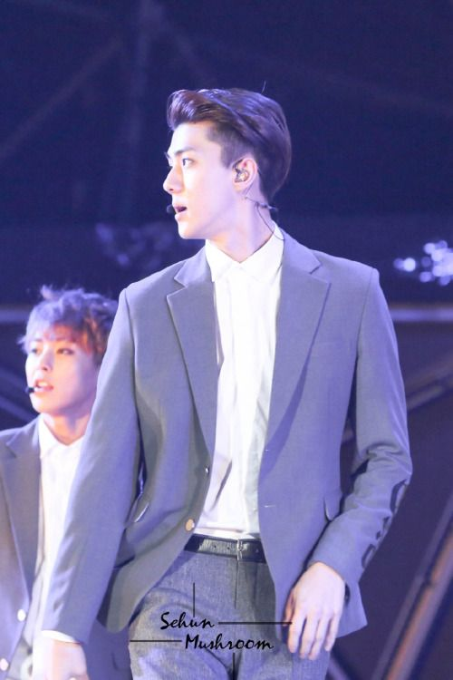 Sehun - 150321 SMTown Live World Tour IV in Hsinchu  Credit: Sehun Mushroom.