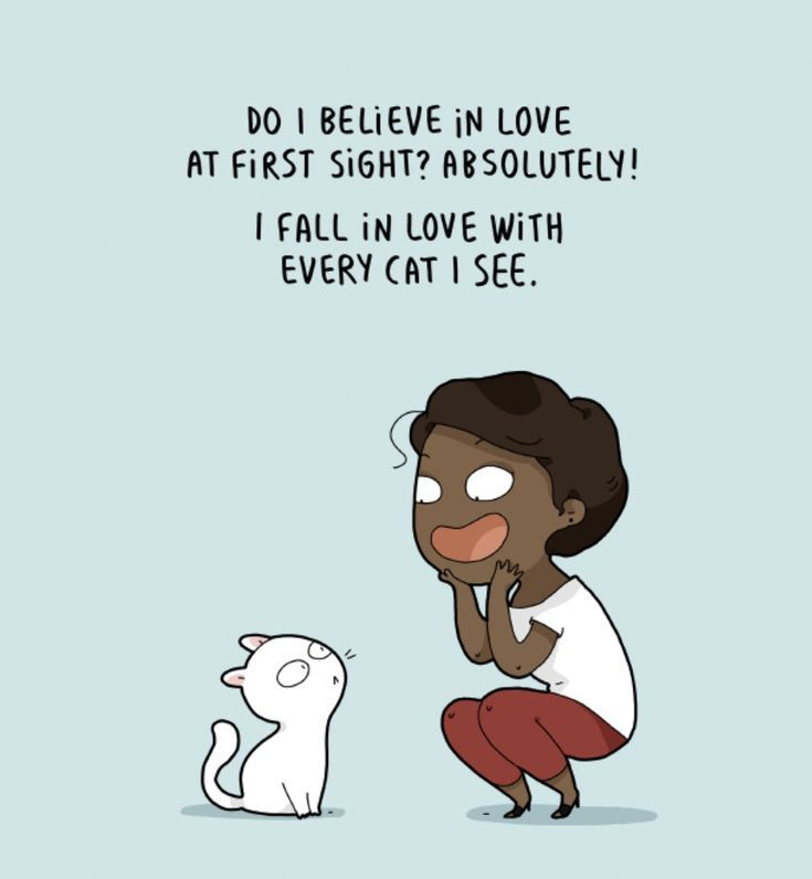 Do I Believe In Love At First Sight Absolutely I Fall In Love With Every Cat I See Catquotes Catladyproblems Cat Quotes Funny Crazy Cats Funny Dog Memes