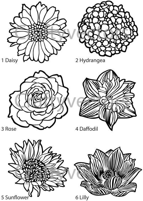 Flower Vector Designs 1 SVG Patterns Pyrography