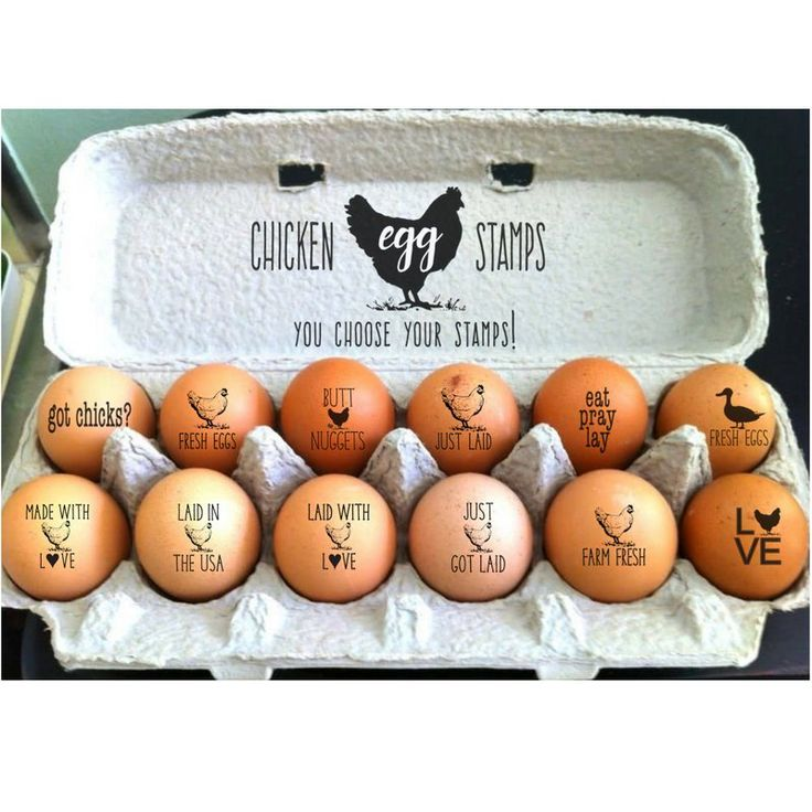 Chicken Coop Egg Stamps Funny Chicken Gift For