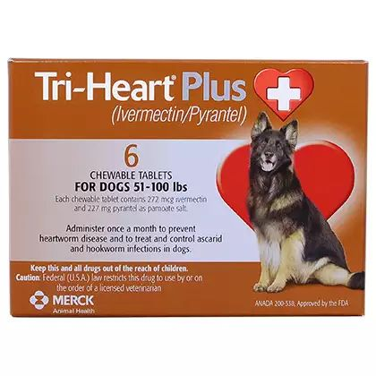 Ivermectin Dogs Heartworm