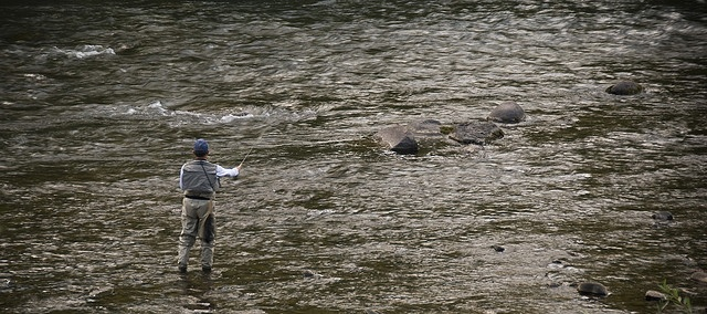 84 best durango wildlife images on pinterest wildlife for Durango fish hatchery