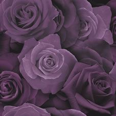 Go bold and prominent with this gorgeous wallpaper design complete with bold purple roses. It will surely serve as a fantastic talking point for any room.  <BR>  <BR>Design Match: Offset<BR> Design Repeat: 53cm <BR>Roll length: 10.05m <BR> Roll width: 53cm<BR><BR>Co-ordinates perfectly with Wilko  paint. We  love Purple  Haze and Moonlight White.