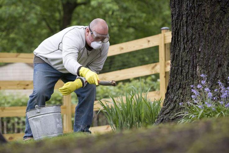Cuarto del jardinero: ¿qué herramientas de jardinería no pueden faltar? - http://www.jardineriaon.com/cuarto-del-jardinero-que-herramientas-de-jardineria-no-pueden-faltar.html