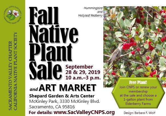 Sacramento Valley Cnps Plant Sales Plant Sale California Native Plants Sacramento Valley