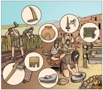 Técnicas neolítico