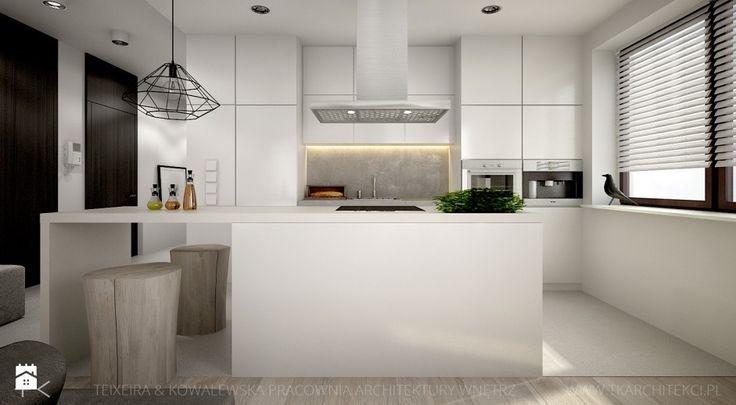 Kuchnia styl Nowoczesny - zdjęcie od TK Architekci - Kuchnia - Styl Nowoczesny - TK Architekci