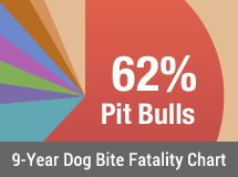 DogsBite.org is a national dog bite victims' group dedicated to reducing serious dog attacks. Learn about victims of pit bull attacks and dangerous dog breeds and how cities regulate these breeds.