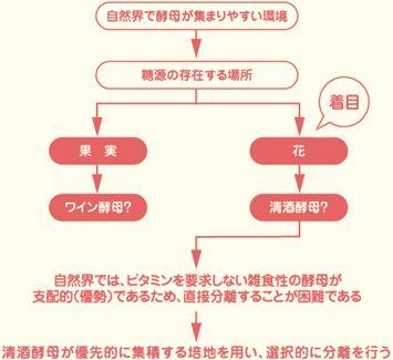 東京農大 花酵母研究会